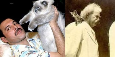 History's most famous cat lovers