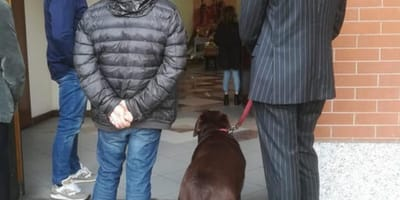 Priest prohibits dog's entry to own master's funeral; dog's reaction sparks outrage