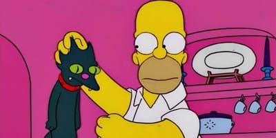 Homer Simpson und Katze