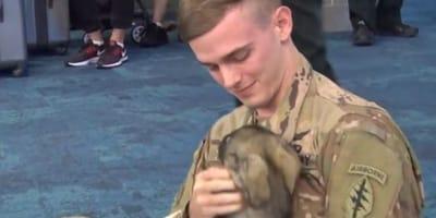 El soldado y su perra