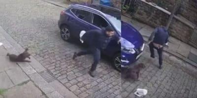 video repartidor asustado huye perro