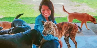 Strays in Pattaya are being saved by the Hope for Strays Foundation