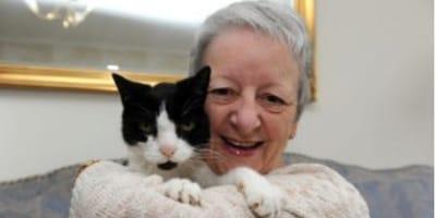 El gato que detectó el cancer de su dueña