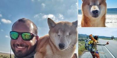 katana perra ciega recorre mundo
