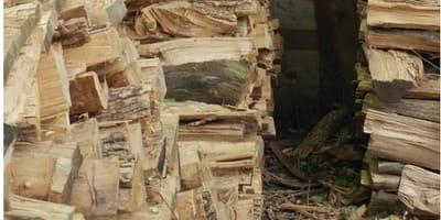 ciocchi di legno