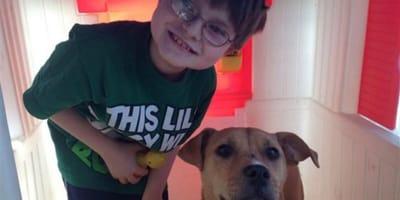 Chłopiec z autyzmem spotyka bezdomnego psa. Wtedy zdarza się cud