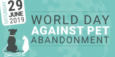 World Day Against Pet Abandonment