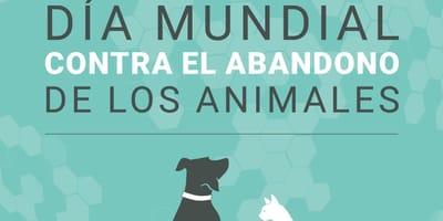 día mundial contra el abandono de animales
