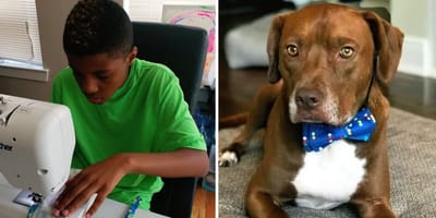 Darius Brown i pies z muszką