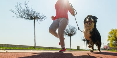 Frau joggt mit Hund