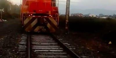 Zugführer sieht Schatten und bremst: Auf den Gleisen traut er seinen Augen nicht!