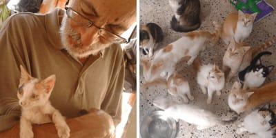 familia humilde cuida 50 gatos refugio caos Venezuela