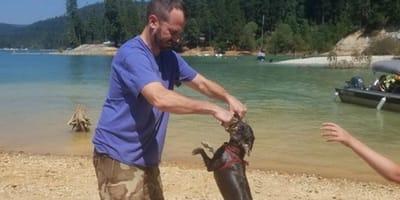 Zwykła zabawa z psem nad jeziorem po kilku godzinach zamieniła się w koszmar