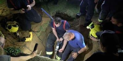 Mieszkańcy wspólnie próbują wydostać kota z betonowej pułapki.