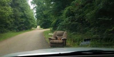 Stary fotel wyrzucony na poboczu.