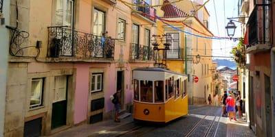 W Lizbonie powołano... koci patrol