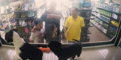 acquirenti e animali in negozio