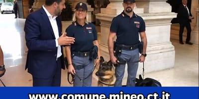 Salvini lancia un appello: adottate i cani dei migranti (Video)