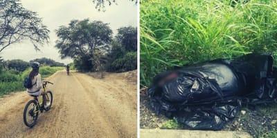 bolsa basura tirada bosque