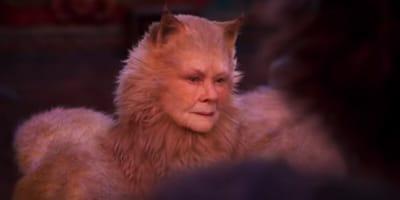 Judi Dench in Cats costume