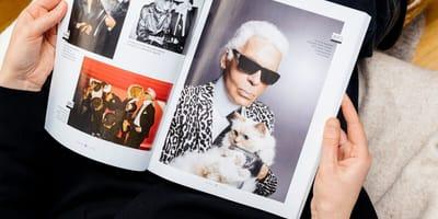 Fans weltweit in Sorge: Lagerfeld-Katze Choupette spurlos verschwunden