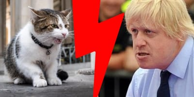 Zettelt Boris einen weiteren Krieg an?