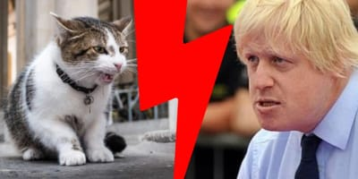 Boris Johnson and Larry the cat are in disagreement