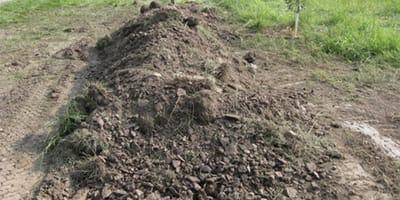 Spod ziemi dochodzą odgłosy: policjanci zaczynają kopać i przeżywają koszmar