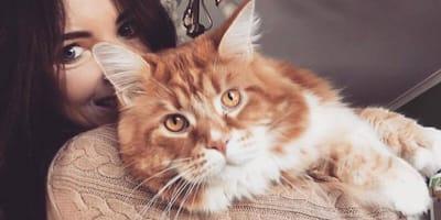Kot Omar ze swoją właścielką