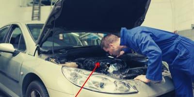 mecanico arreglando coche sorpresa gato