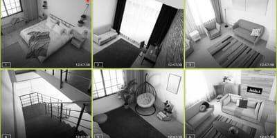 video gato desactiva alarma despertador movil duenos
