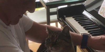 hopkins e il gatto