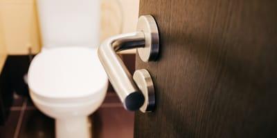 Door handle with toilet in the background