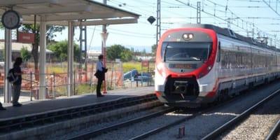 hombre arroja camada perros gatos vias tren Getafe Madrid