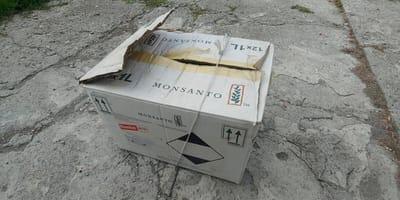 Pudło Monsanto.