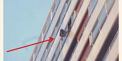Nachbarin wirft etwas vom Balkon: Als die Polizei kommt, sind alle fertig mit den Nerven!