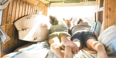 Vivir con tu perro en furgoneta: 6 cuentas de Instagram que te guiarán en esta loca aventura