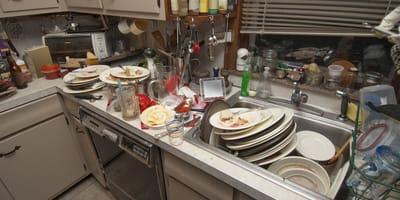 Verdreckte Küche