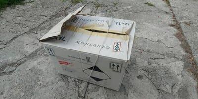 caja atada a un arbol