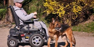 Ten młody chłopak, mimo trudności, uparcie pomaga porzuconym zwierzętom