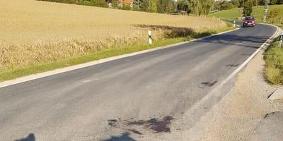 Plama krwi na drodze. Kobieta hamuje i nie może powstrzymać łez