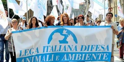 29 Settembre: tutti in piazza per i diritti dei nostri animali