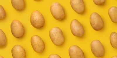 Kartoffeln auf gelbem Hintergrund