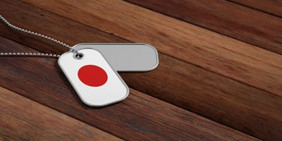Hundekette mit Japan-Muster