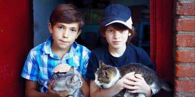 dwaj chlopcy z kotami