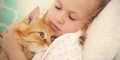 gatos duermen con humanos