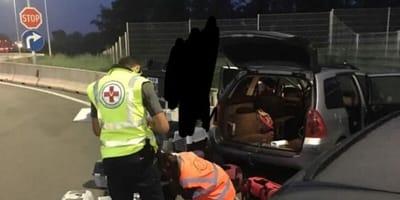 Odore terribile proveniente da un'auto: la polizia scopre il contenuto