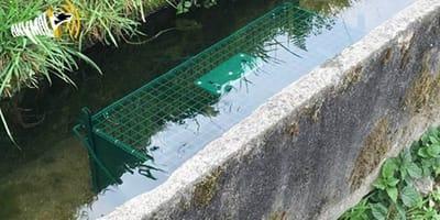 Falle im Wasser