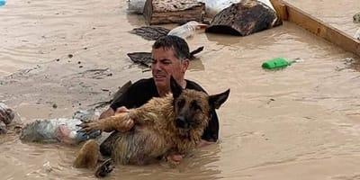 Benidorm llora: desaparecidos, abandonados o ahogados, ¡el balance del temporal!