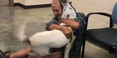 Bezdomny mężczyzna odnajduje swojego zaginionego psa. Ich ponowne spotkanie jest rozczulające! (VIDEO)